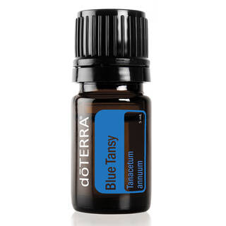 Blue Tansy Essential Oil 5 ml